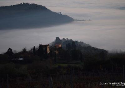 Nebbia in Val di Sieve