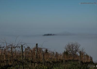 Nebbia Tavolese