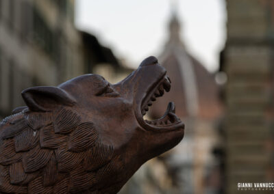 I lupi di Liu Rouwang